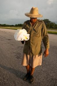 Venditore di formaggio in autostrada