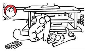 Screen Grab - Simons Cat